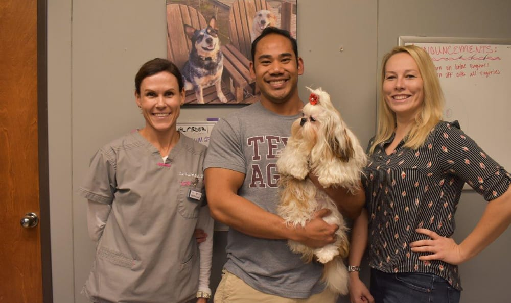 Staff members at Creature Comfort Animal Clinic