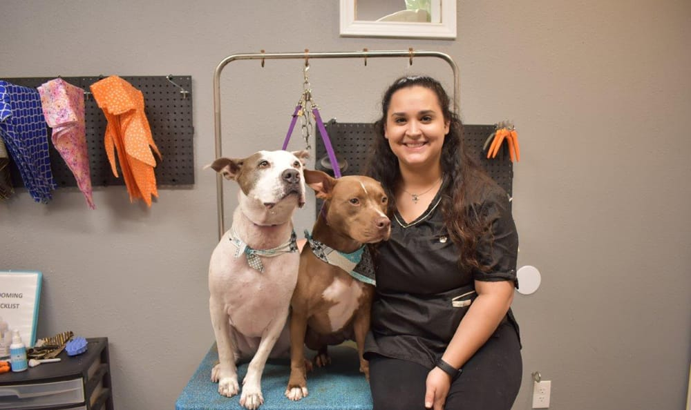 Marie with two dogs at Creature Comfort Animal Clinic