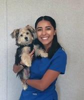 Brenda Stern, RVT at Cypress Animal Hospital