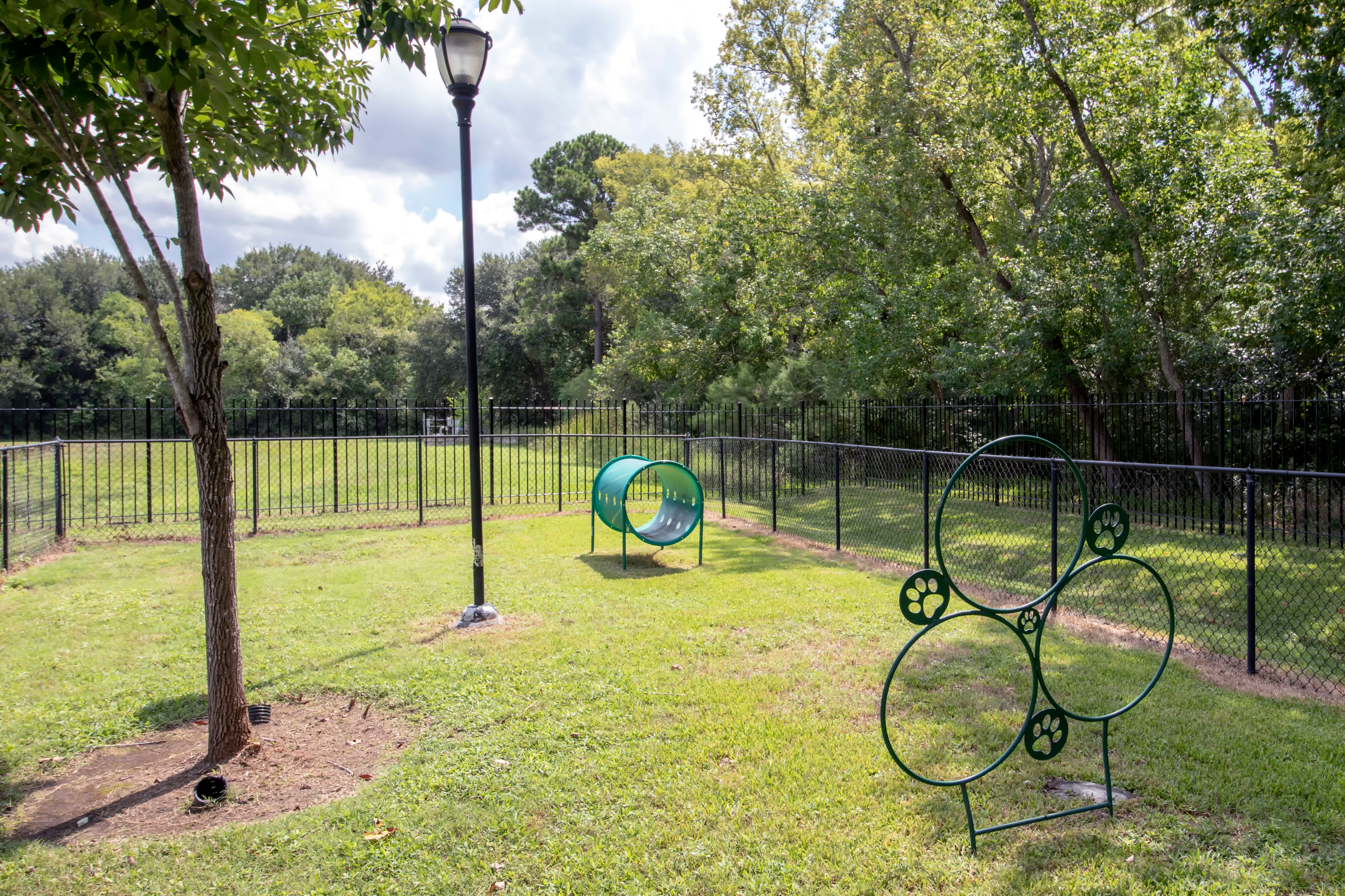 Apartments with a beautiful dog park