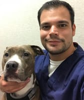 Dimitrio at Lifetime Animal Care Center