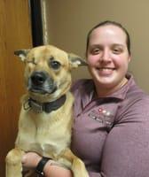 Sam at Sioux Falls Animal Hospital