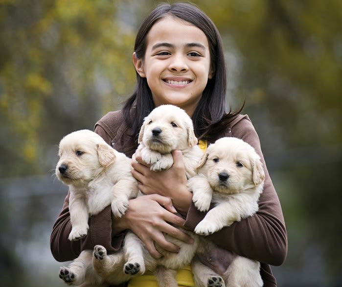 Girl holding puppies at The Animal Hospital on the Golden Strip in Williamsport, Pennsylvania