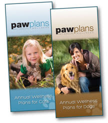 Our brochure at Kenmore Animal Hospital in Kenmore, New York
