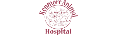 Kenmore Animal Hospital