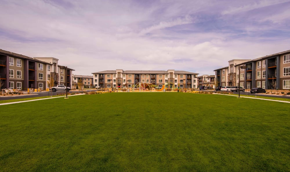Exterior view of giant open lawn/park area onsite Strata Apartments in Denver, Colorado