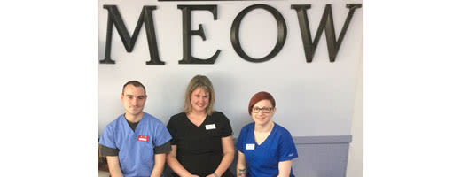 Three technicians sitting in front of a Meow sign at Quail Corners Animal Hospital