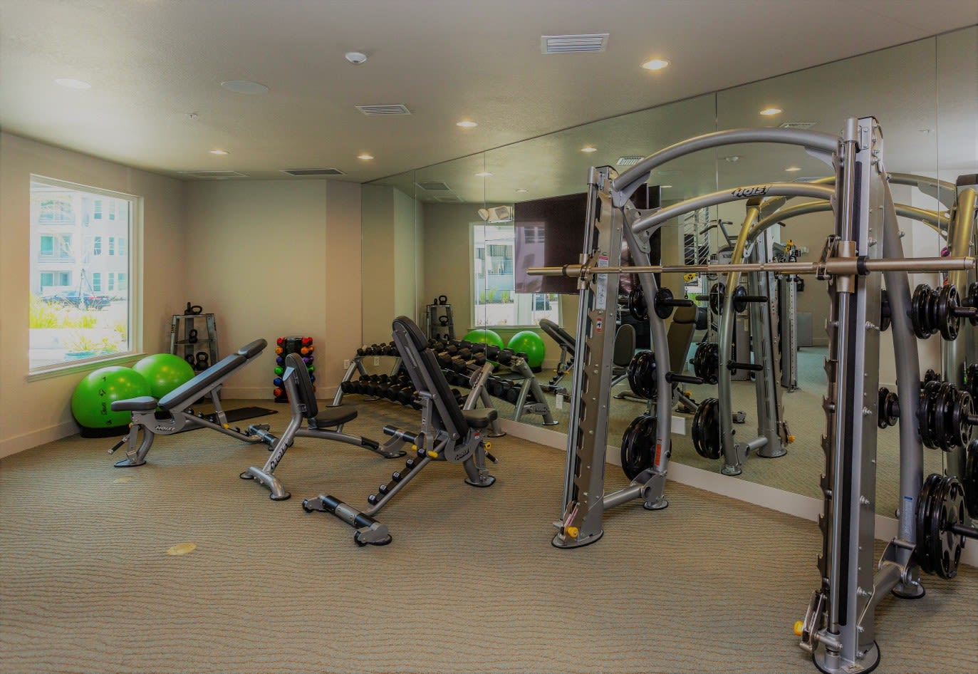 Fitness Center at 50 Paramount Apartments in Tampa Florida