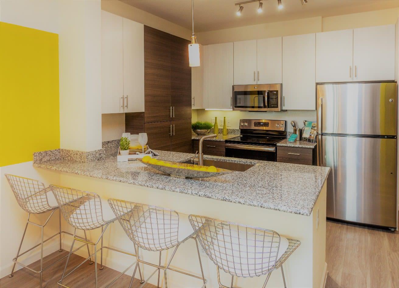 Kitchen Area at 50 Paramount Apartments in Tampa Florida