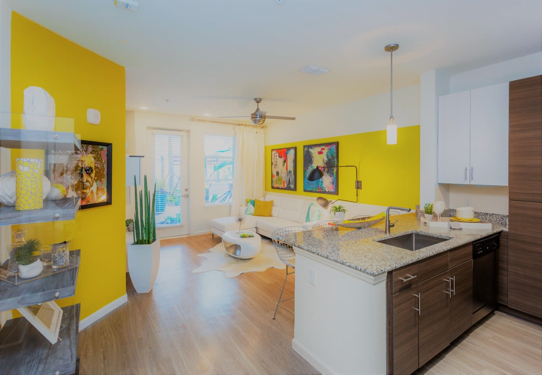 Living Room at 50 Paramount Apartments in Tampa Florida