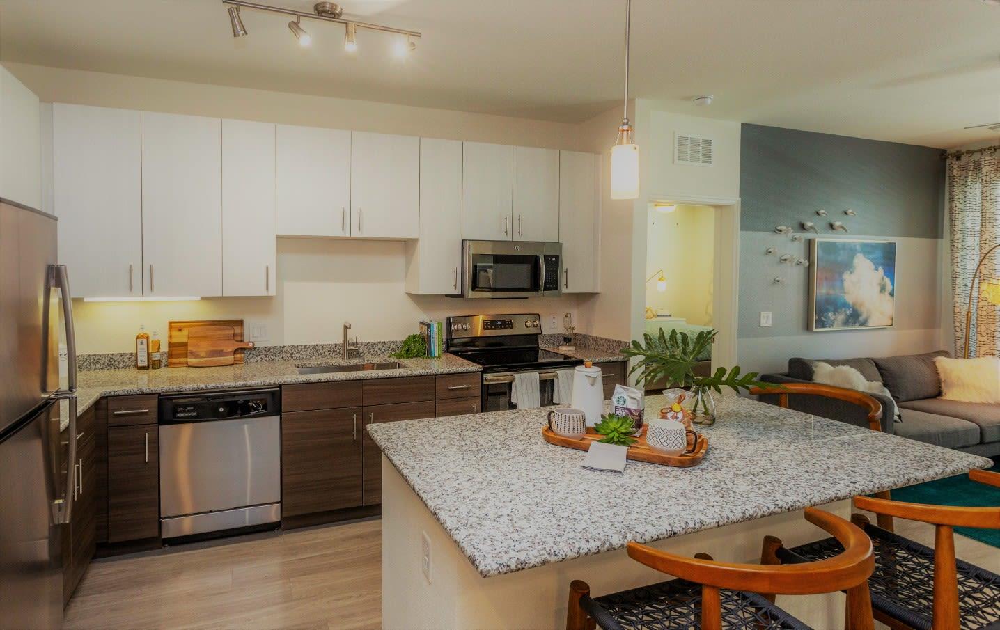 Kitchen at 50 Paramount Apartments in Tampa Florida