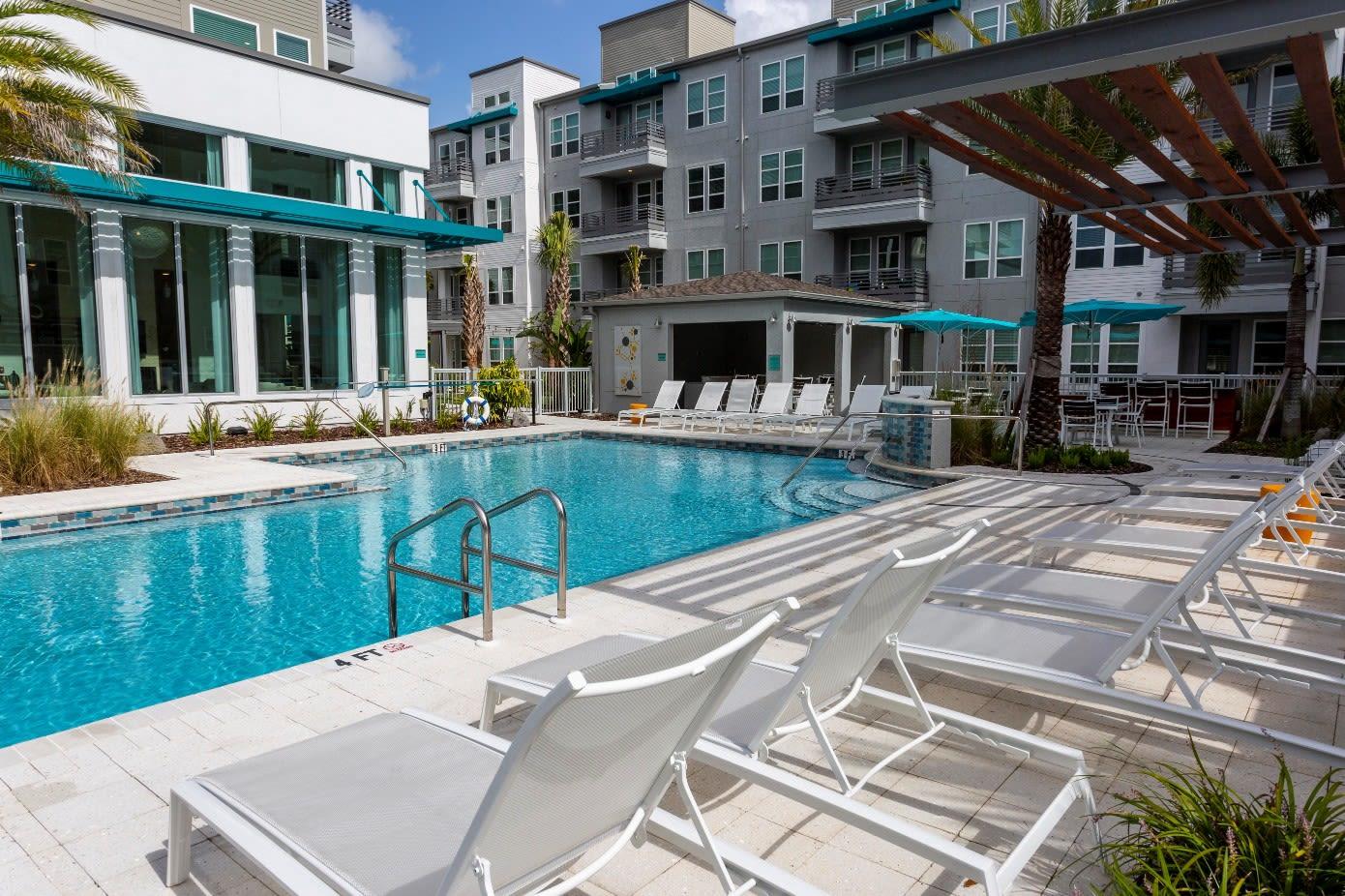 Pool Area at 50 Paramount Apartments in Tampa Florida