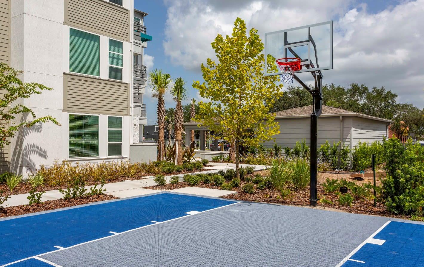Basketball Court at 50 Paramount Apartments in Tampa Florida