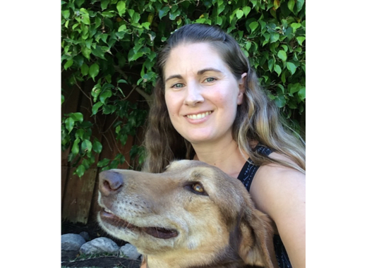 Jill Child, DVM at Plaza Del Amo Animal Hospital & Pet Keeper