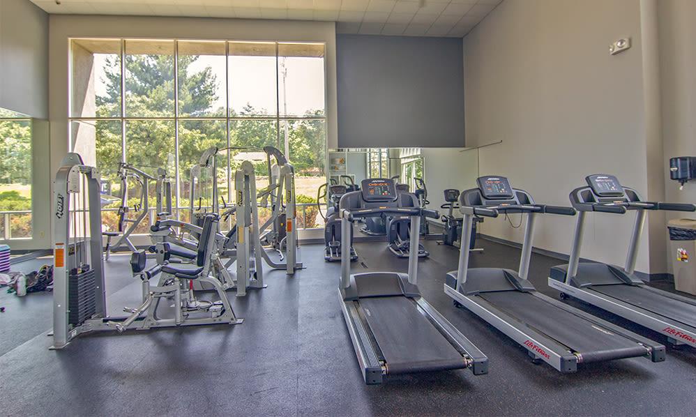 State-of-the-art fitness center at Lakeshore Drive in Cincinnati, Ohio
