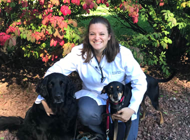 Stephanie Vanden Bush at Stoughton Veterinary Service Animal Hospital in Stoughton, Wisconsin
