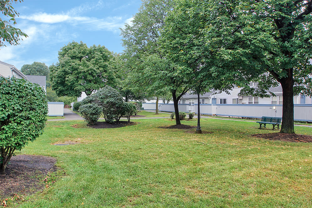 Green space at Brighton Colony Townhomes in Rochester, New York