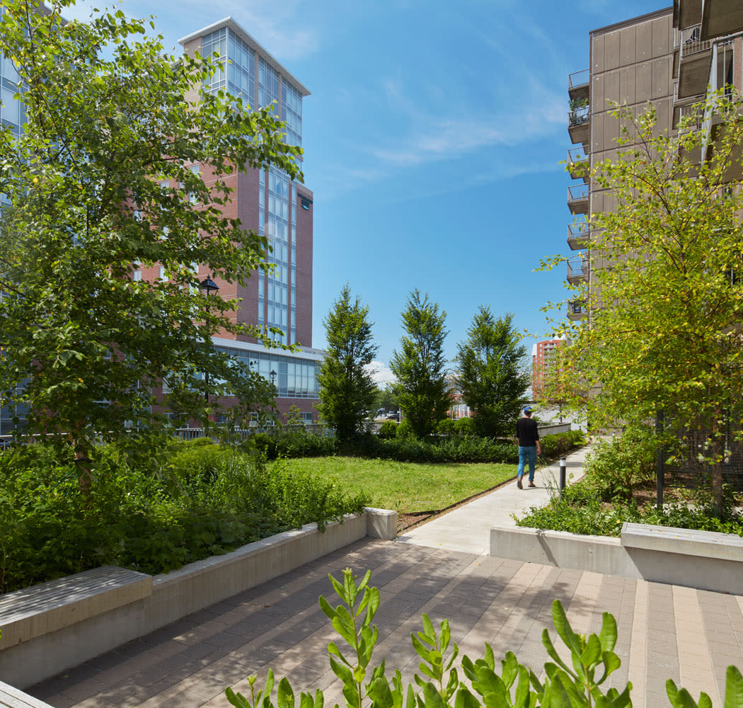 Lush landscaping and common areas at Halifax Apartments in Halifax