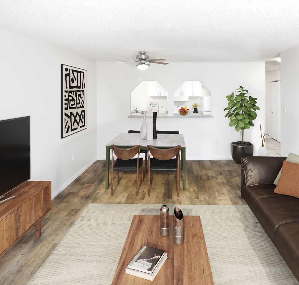 Dining room options at Halifax Apartments in Halifax