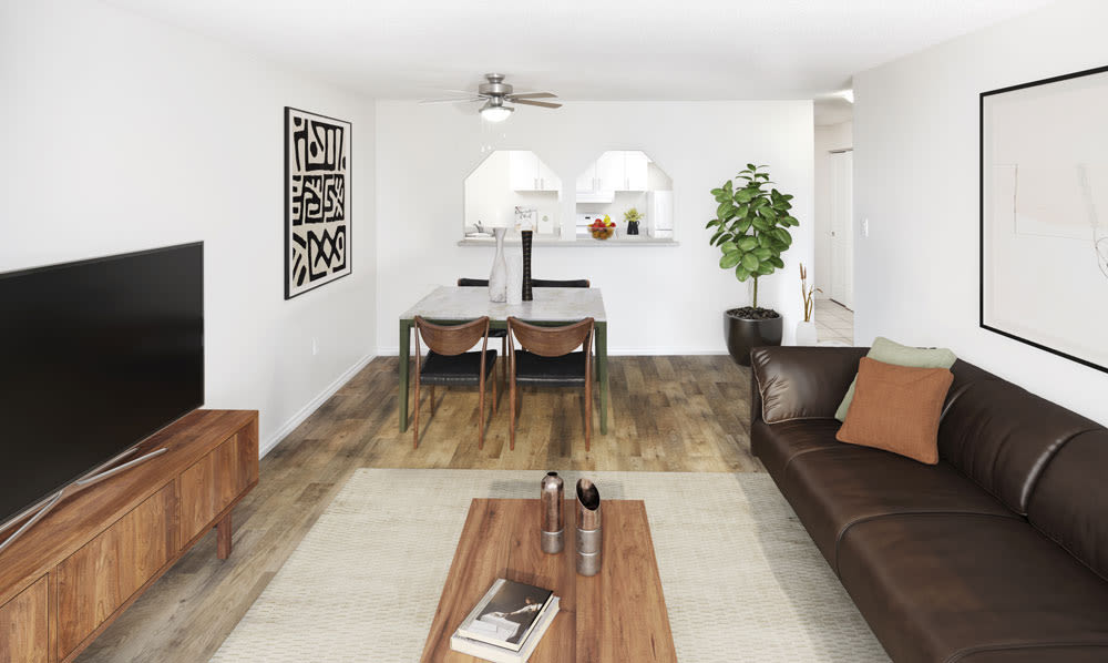 Halifax Apartments offers a naturally well-lit living room in Halifax, Nova Scotia