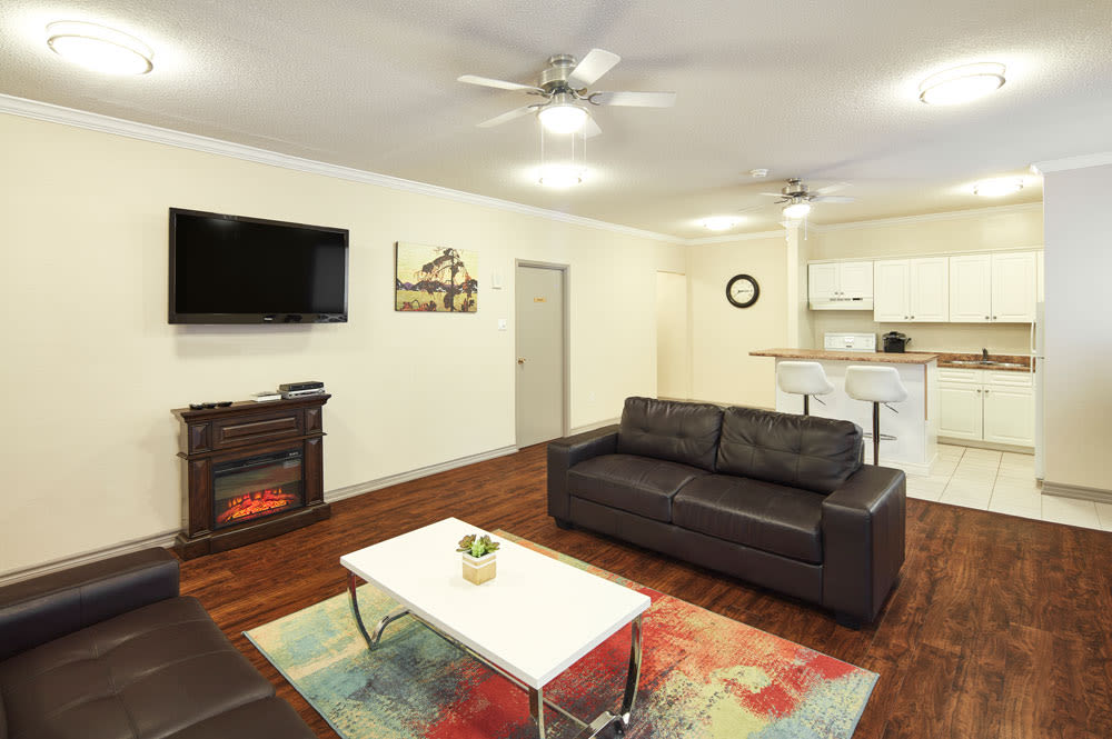 Enjoy our newly updated apartments living room at Spring Garden