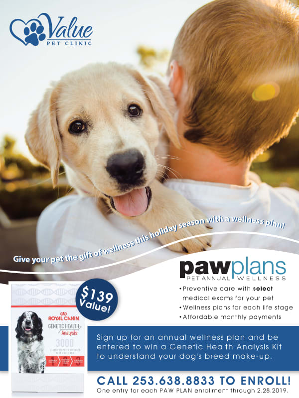Paw plans promotion
