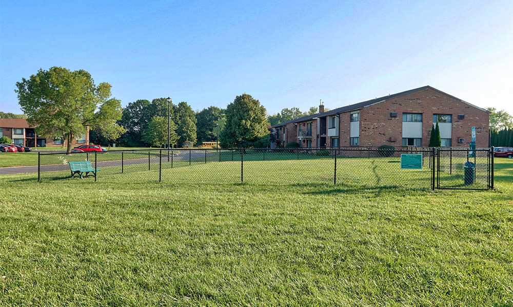 Enjoy apartments with a dog park at Webster Manor Apartments
