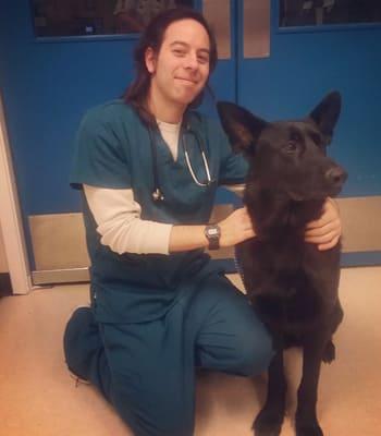 Kyle, VA at Value Pet Clinic - Tacoma