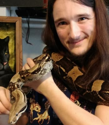 Phoenix, LVT at Value Pet Clinic - Tacoma