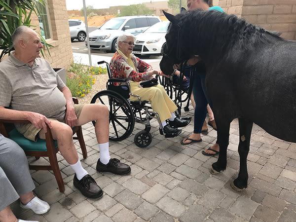 senior residents outside feeding a pony