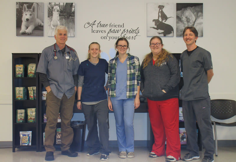 Our team at Shoreline Central Animal Hospital