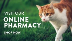 Lee's Summit - North Online Pharmacy