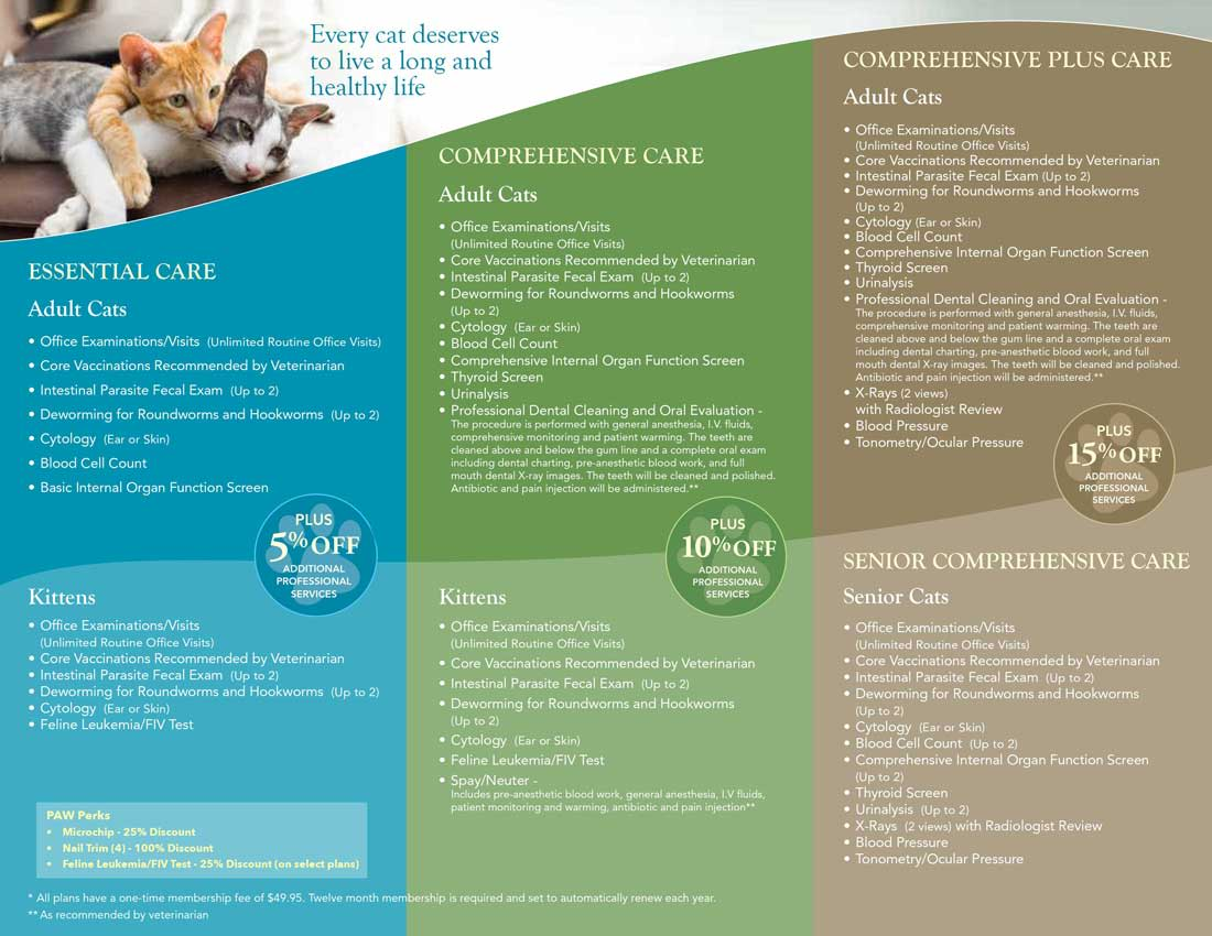 Paw plans cat brochure at Angeles Clinic For Animals in Port Angeles, Washington