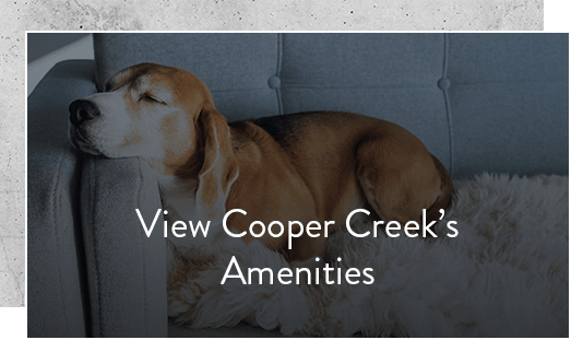 Check out our amenities at Cooper Creek in Louisville, Kentucky