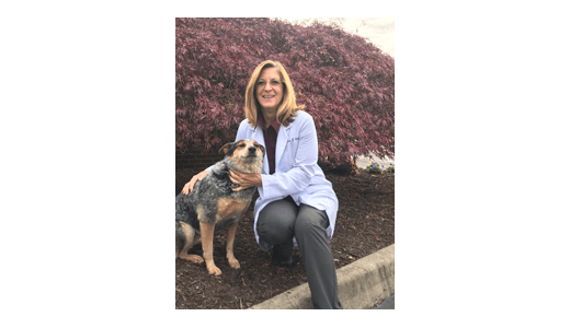 Dr. Lisa at Augusta Valley Animal Hospital in Staunton