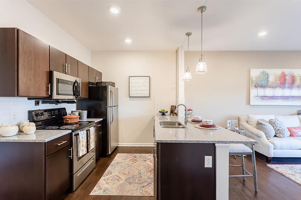 A unique kitchen in Rochester, New York