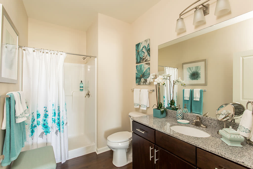 Bathroom at Orchard View Senior Apartments home