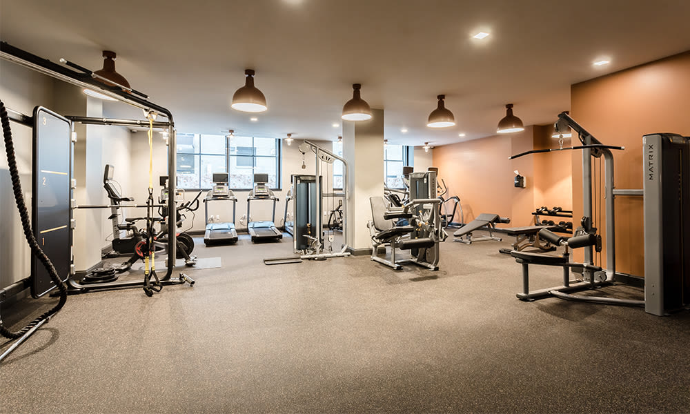 Enjoy apartments with a spacious fitness center at The Linc
