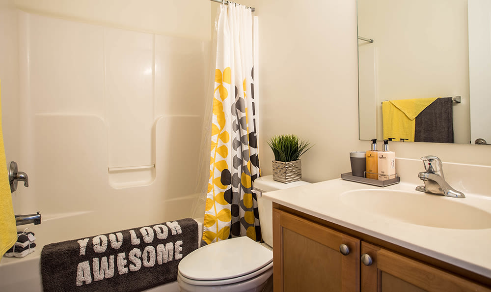 Bathroom at apartments in Dover, Delaware