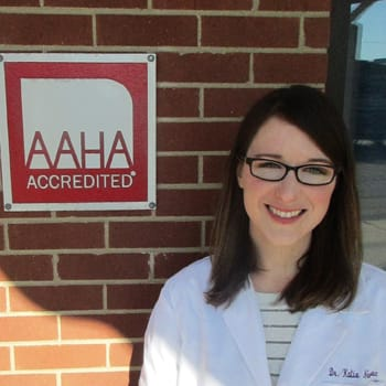 Dr. Katie Neumann at Animal Medical Clinic - Wheaton