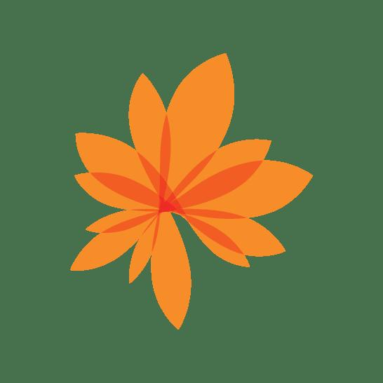 Leaf Graphic