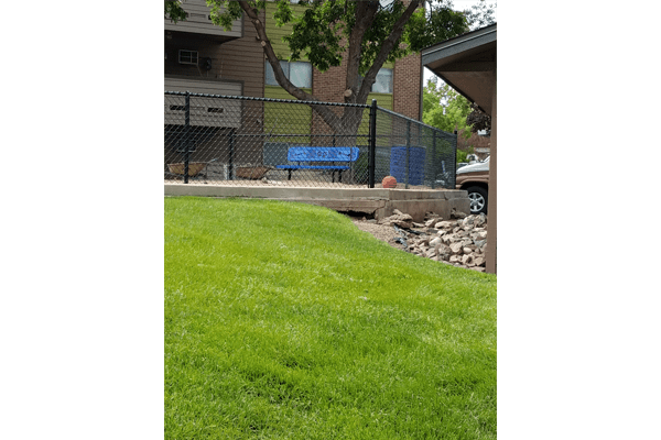 Grassy area by a dog park at Ascend at Red Rocks