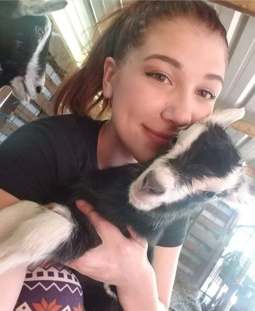 Laney at Eugene Animal Hospital