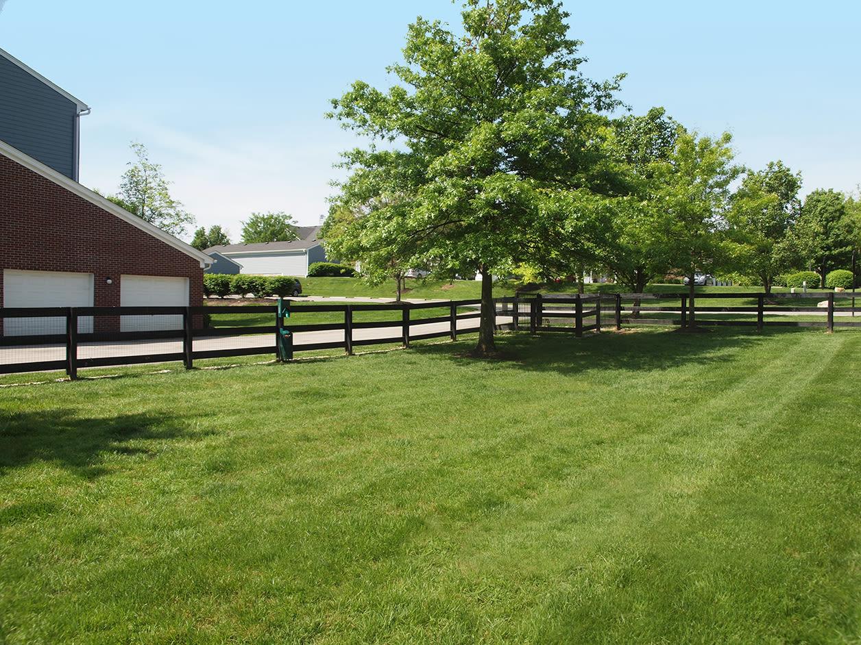 Large grassy field at Shadow Ridge in Louisville, Kentucky