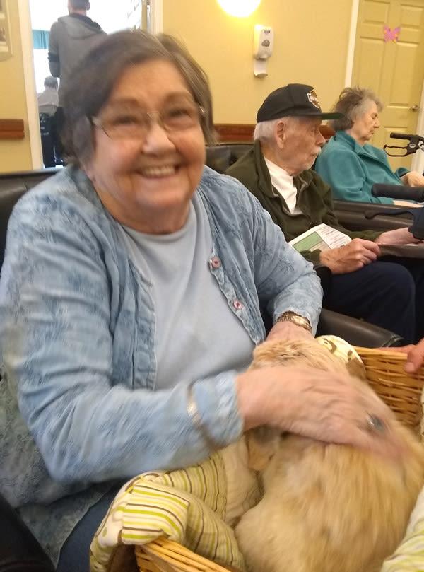 memory care pet therapy at Bridgecreek