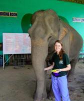 Dr. Molly Maynard at College Mall Veterinary Hospital