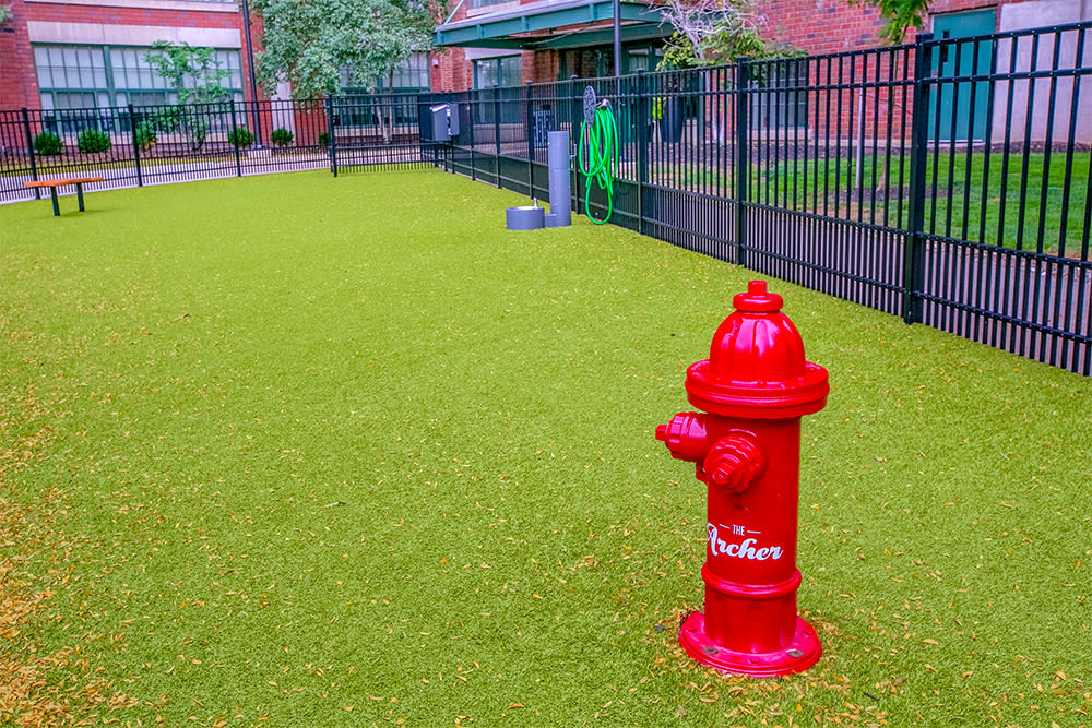 Spacious dog park at The Archer in Cleveland, Ohio