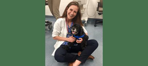 Dr. Hampton of Danvers Animal Hospital