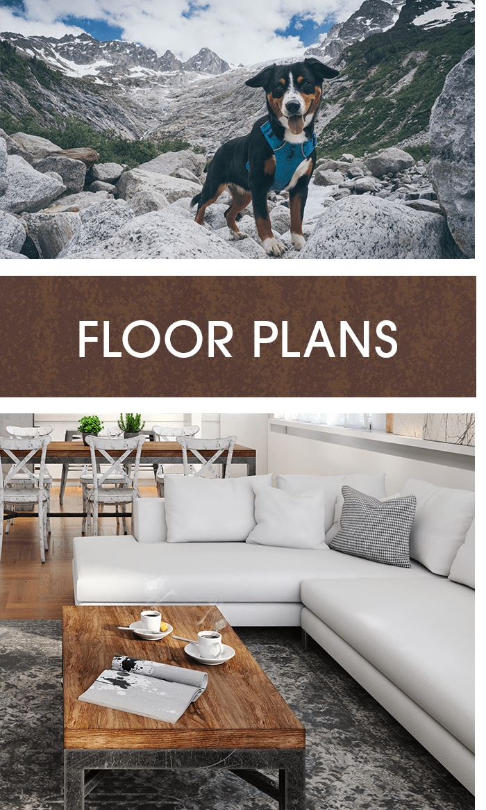 View our floor plans at FalconView in Colorado Springs, Colorado