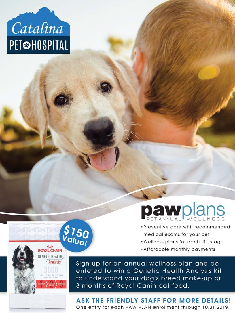 Paw Plans promotion